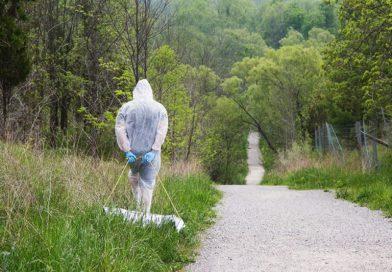 Kleszcze – zbiór ze środowiska naturalnego